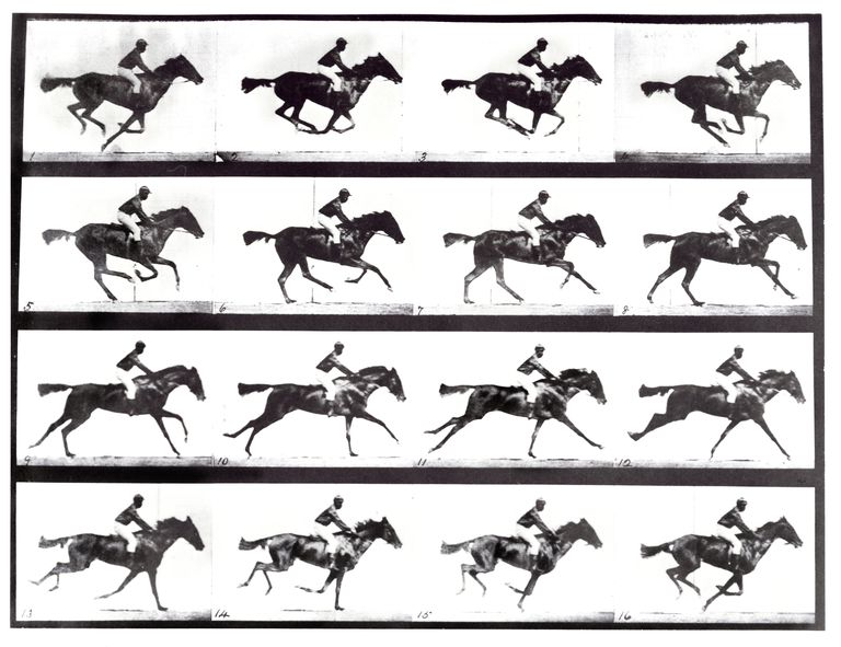 """The Horse in Motion"" by Eadweard Muybridge"