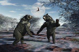 Arctodus Bears in a Territorial Dispute