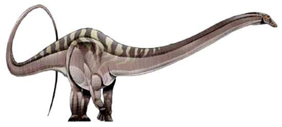 dyslocosaurus