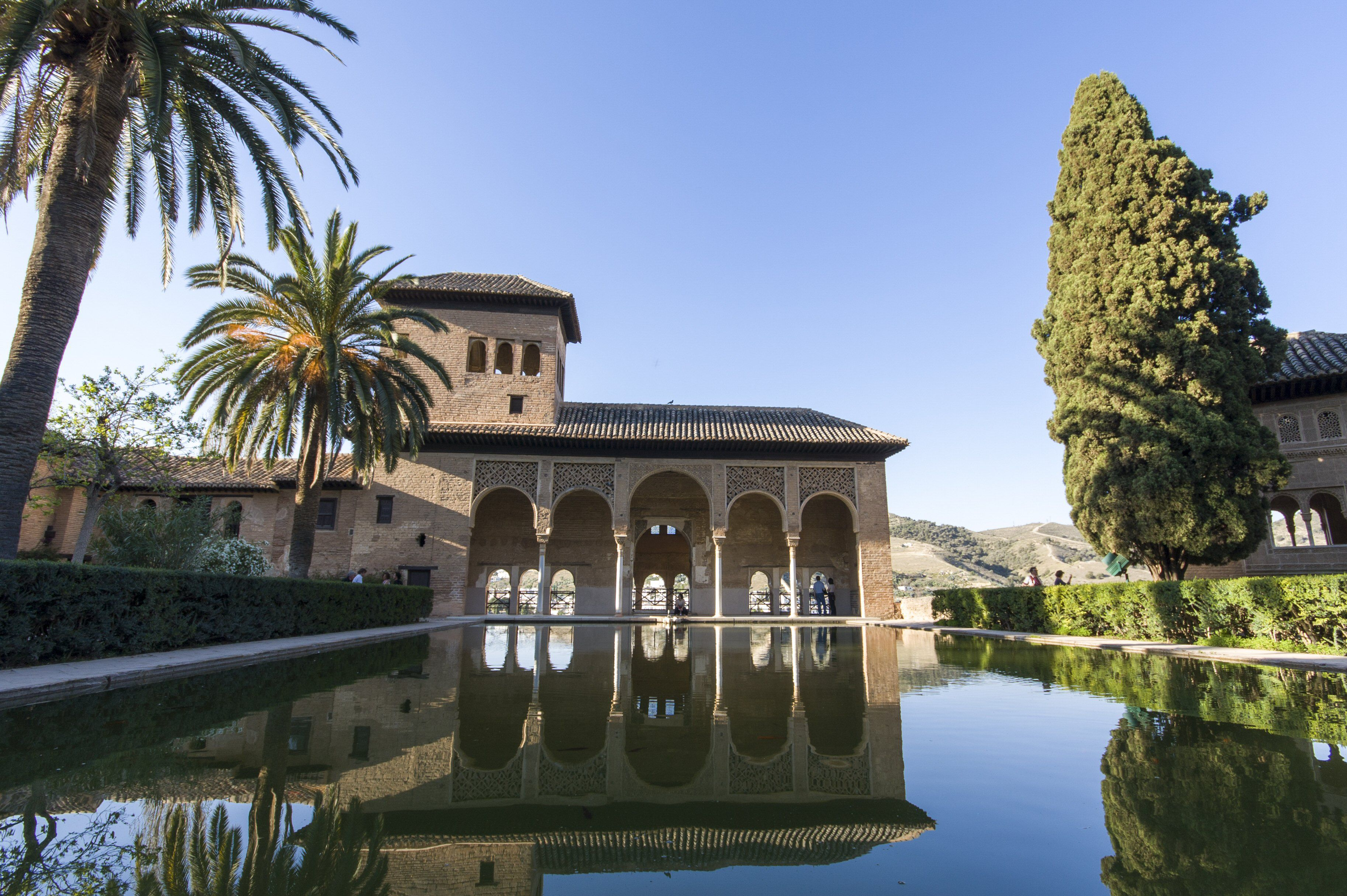 Reflecting Pool and Portico with palm trees
