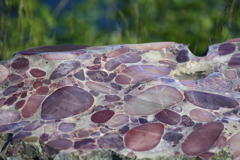 A rock containing breccia outside.