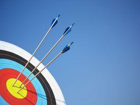 arrows in an archery board