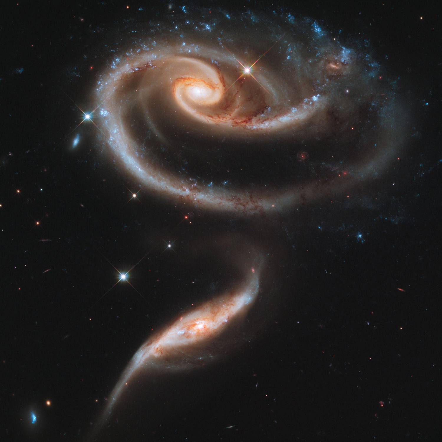 hubble rose galaxies