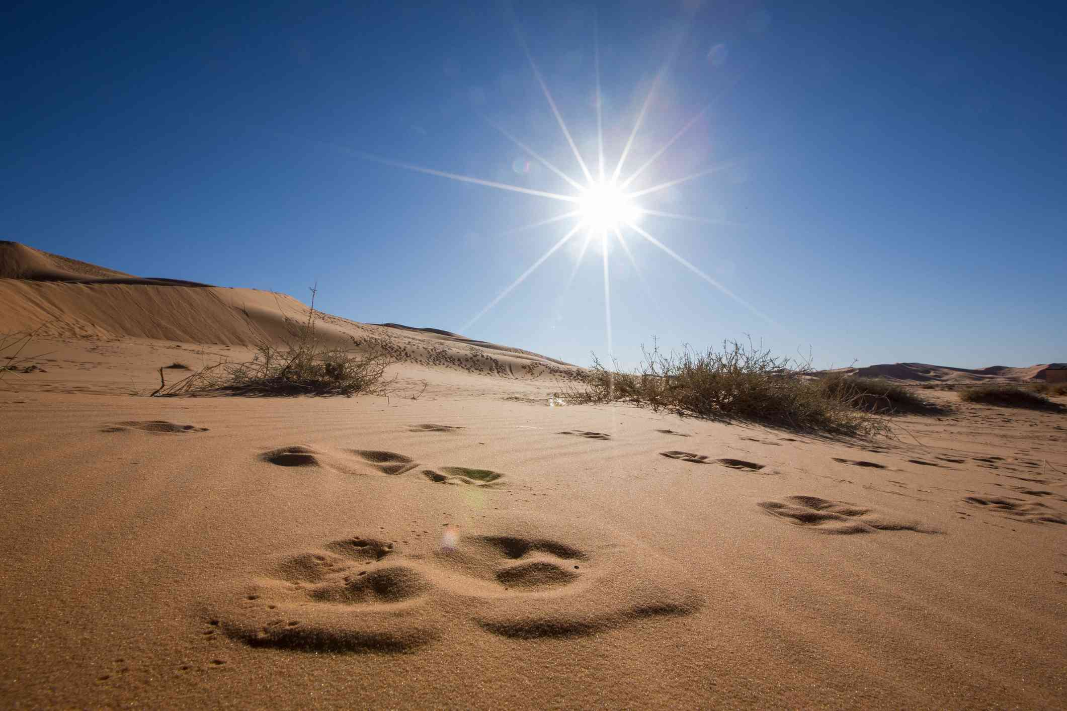 Sand Dunes Against Blue Sky And Bright Sun