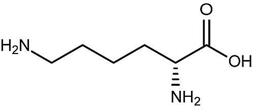 This is the chemical structure of D-lysine.