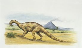 Volcanoes were thought to have contributed to the Triassic-Jurassic mass extinction