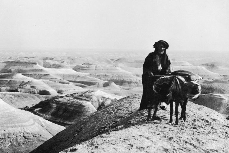 Historical photograph of a man and a donkey in a desert landscape
