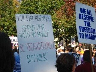 from Darwin gay and lesbian political agenda
