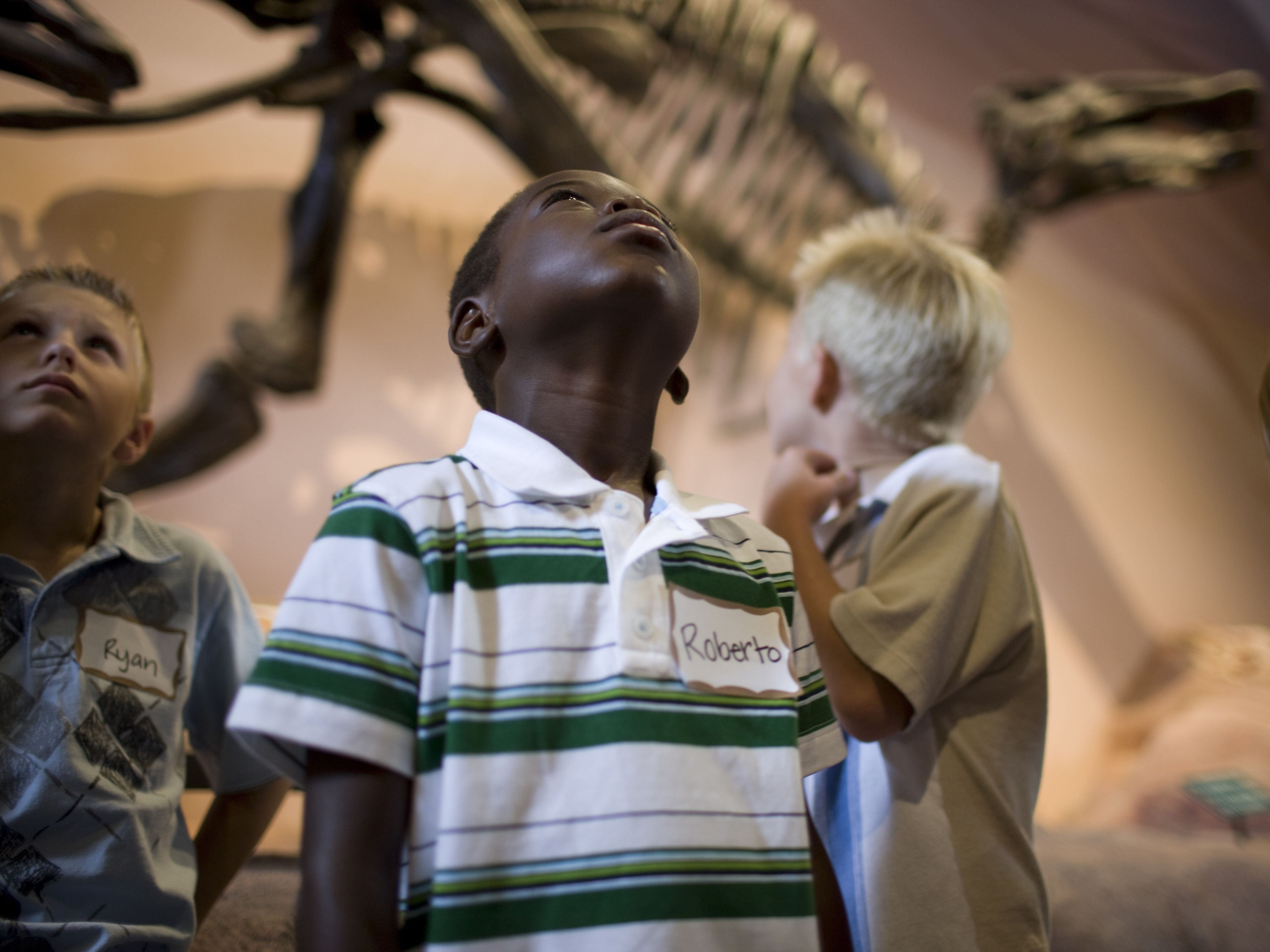 boys in museum of dinosaurs