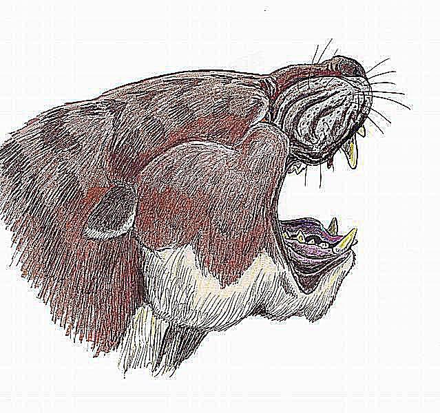 Sarkastodon