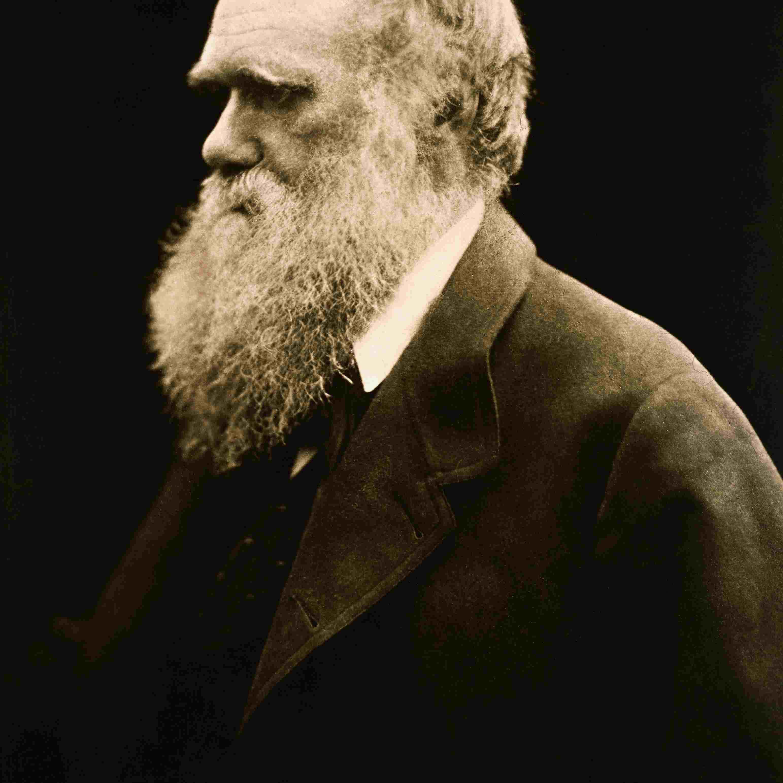Portrait of Charles Darwin by Julia Margaret Cameron