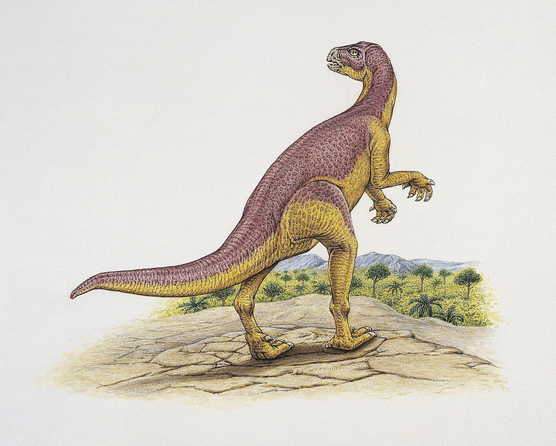Prečo Carbon-14 nie je používaný pre datovania dinosaurie kosti