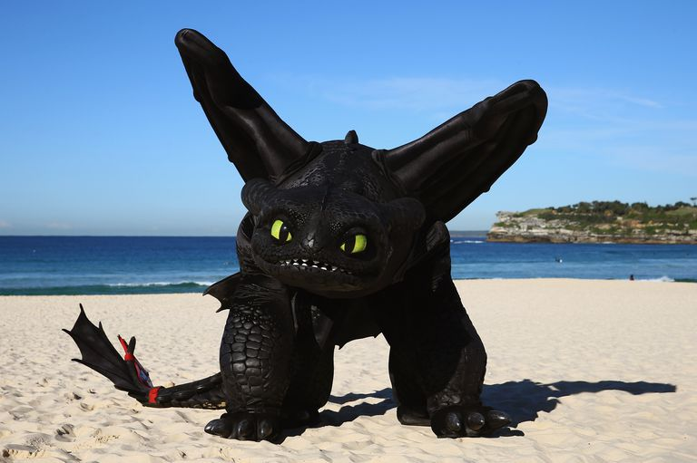 How to Train Your Dragon character on the beach