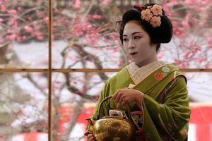 Plum Blossom Festival At Kitano Tenmangu