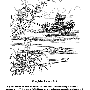 Everglades National Park Coloring Page