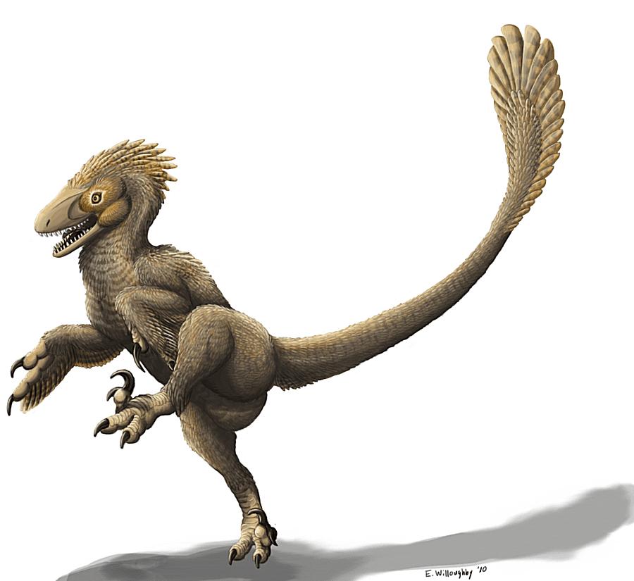 Illustration of the dinosaur balaur.
