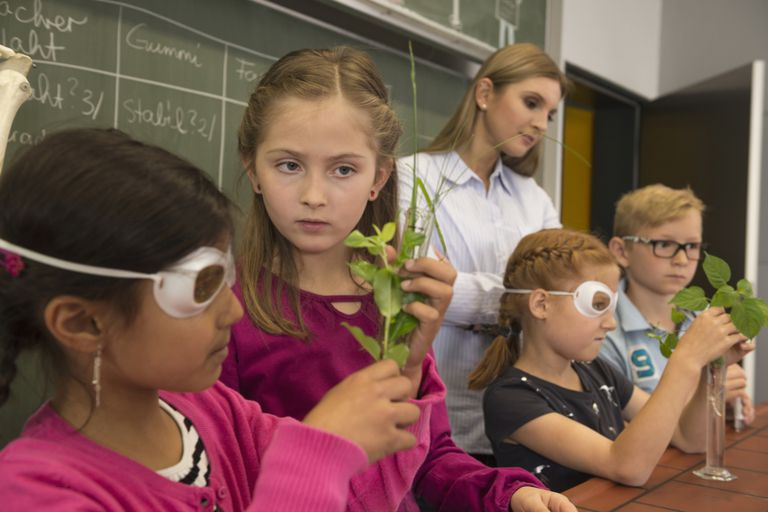 10 Great Biology Activities and Lessons