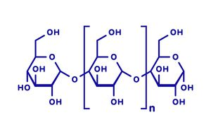 Amylose chemical structure