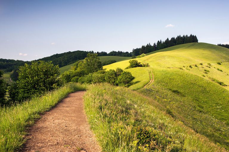"Vanderbilt is thought to derive from a German word meaning ""low hill,"" such as these rolling hills in the German Kaiserstuhl area."
