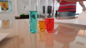 Test Tubes With Liquid On Table At Laboratory