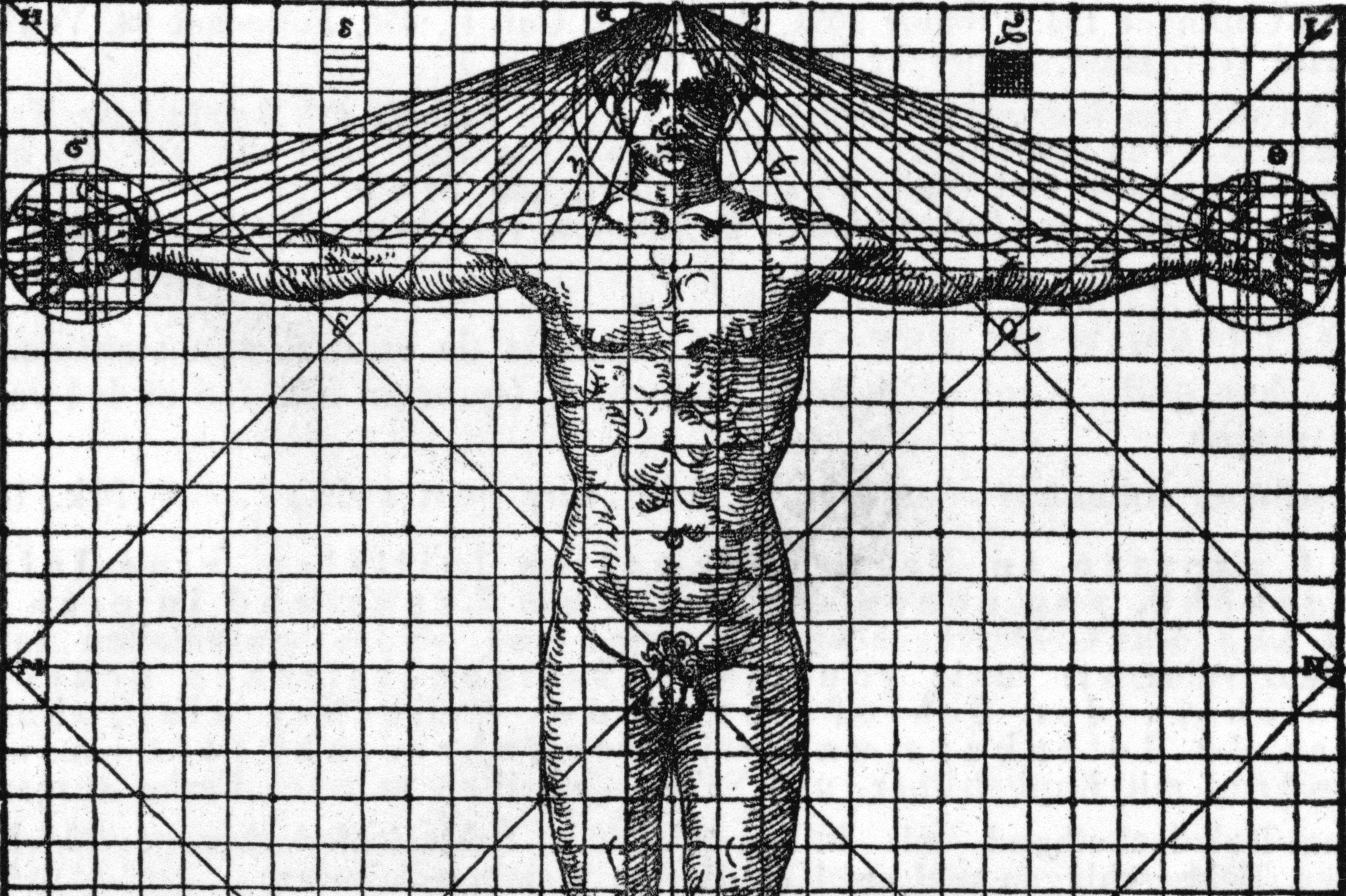black and white illustration of human man's front on a graph with lines showing symmetry and proportion
