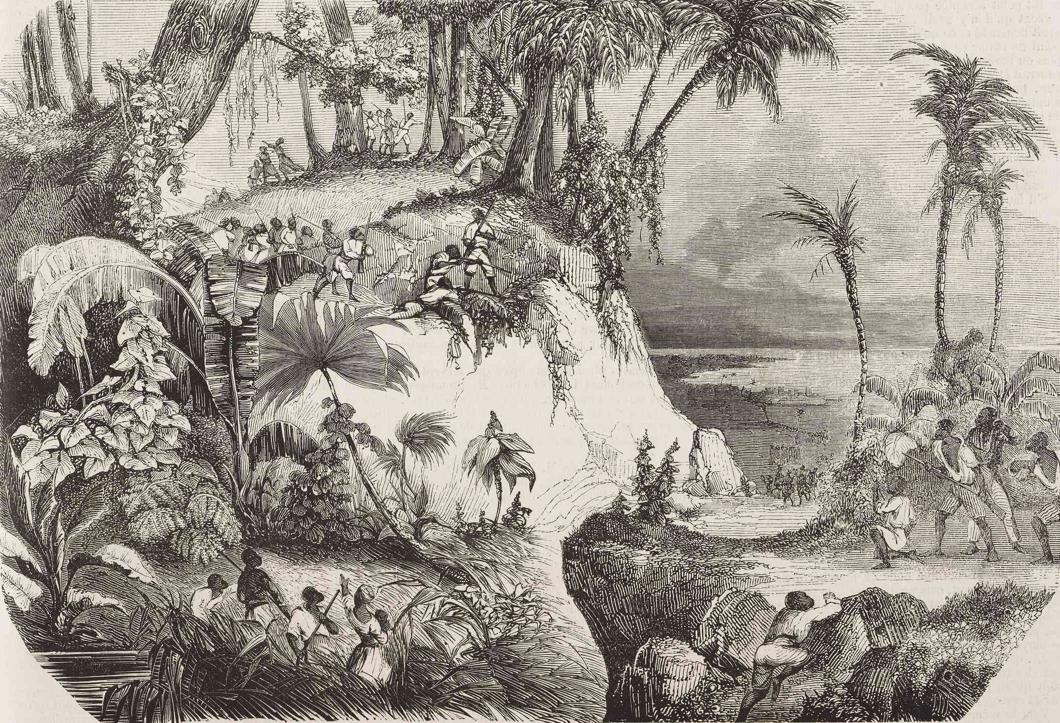 ambushing troops in a forest during the Haitian revolution