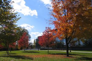 Autumn on Lafayette College campus