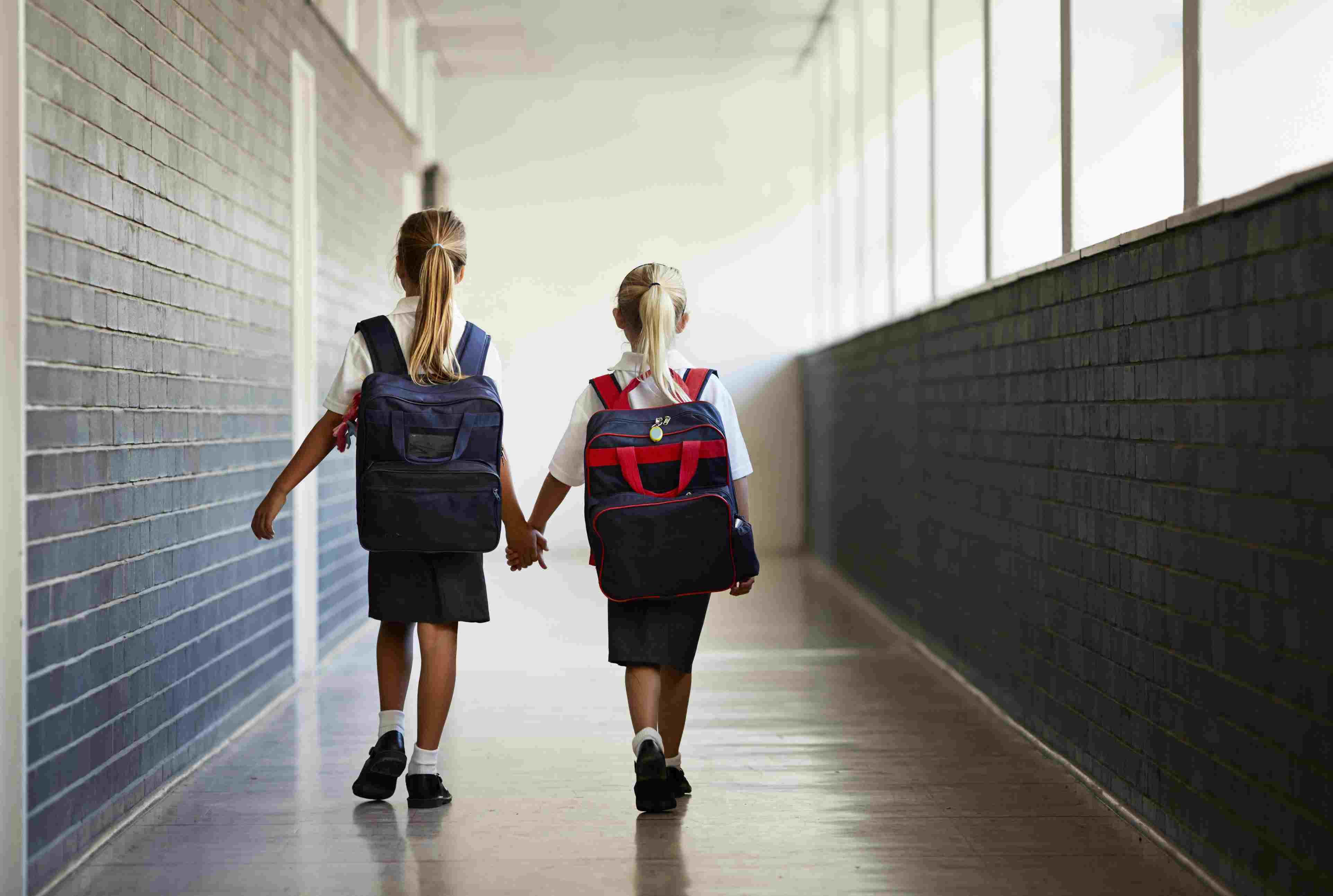 f2a1ccf28b Schoolgirls walking hand in hand at school isle