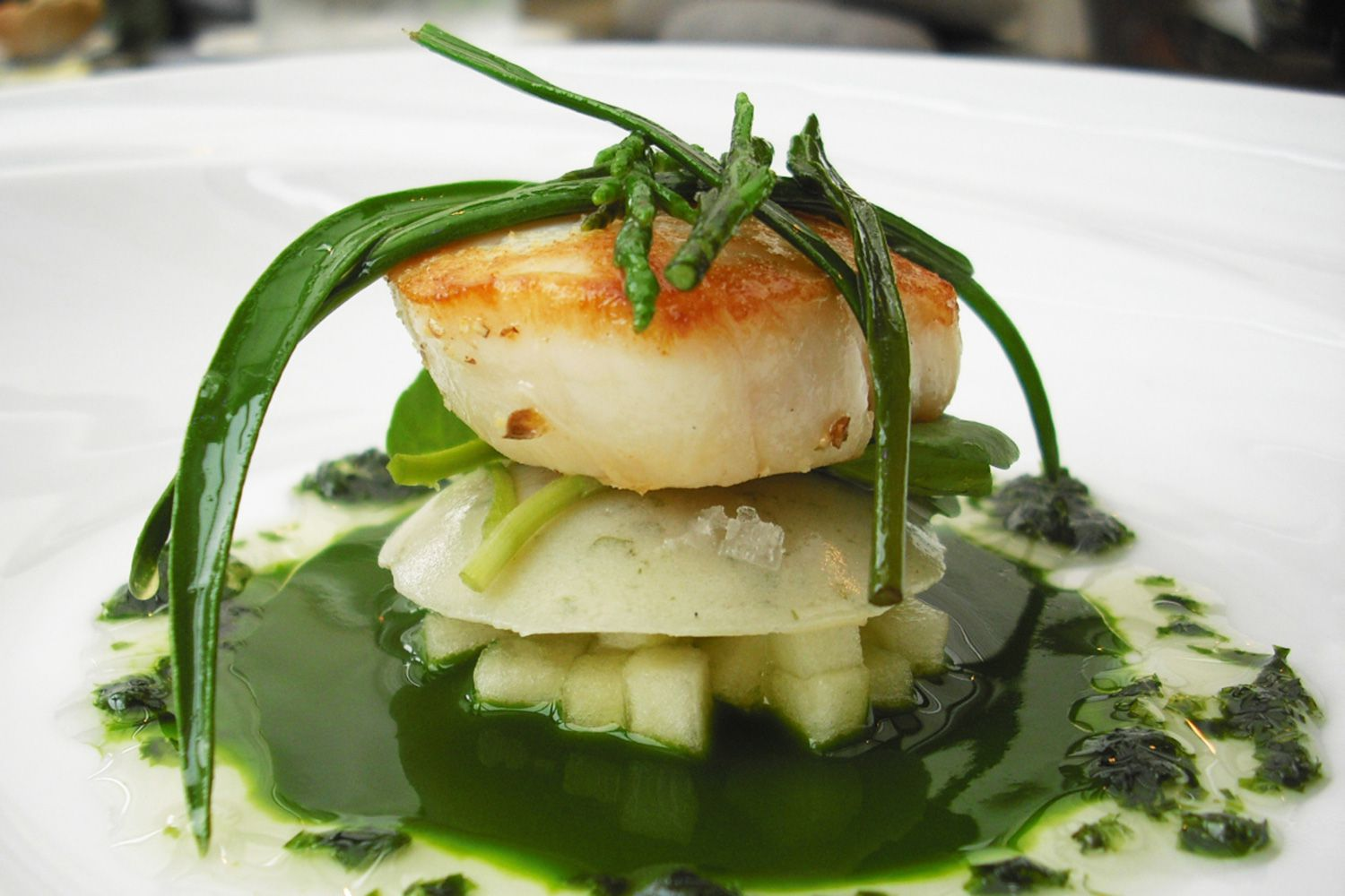 Do You Know What Scallops Are