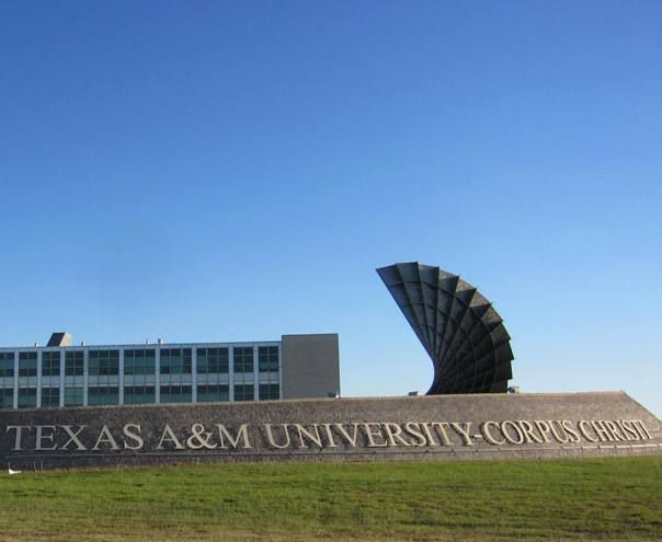 Image result for Texas A&M – Corpus Christi
