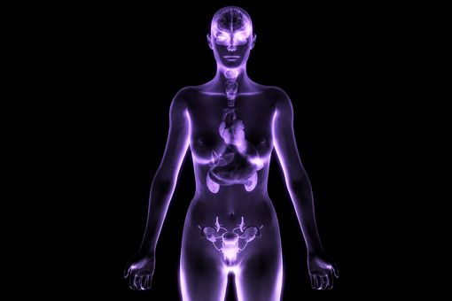 The endocrine system acts as a chemical messaging system between body parts.