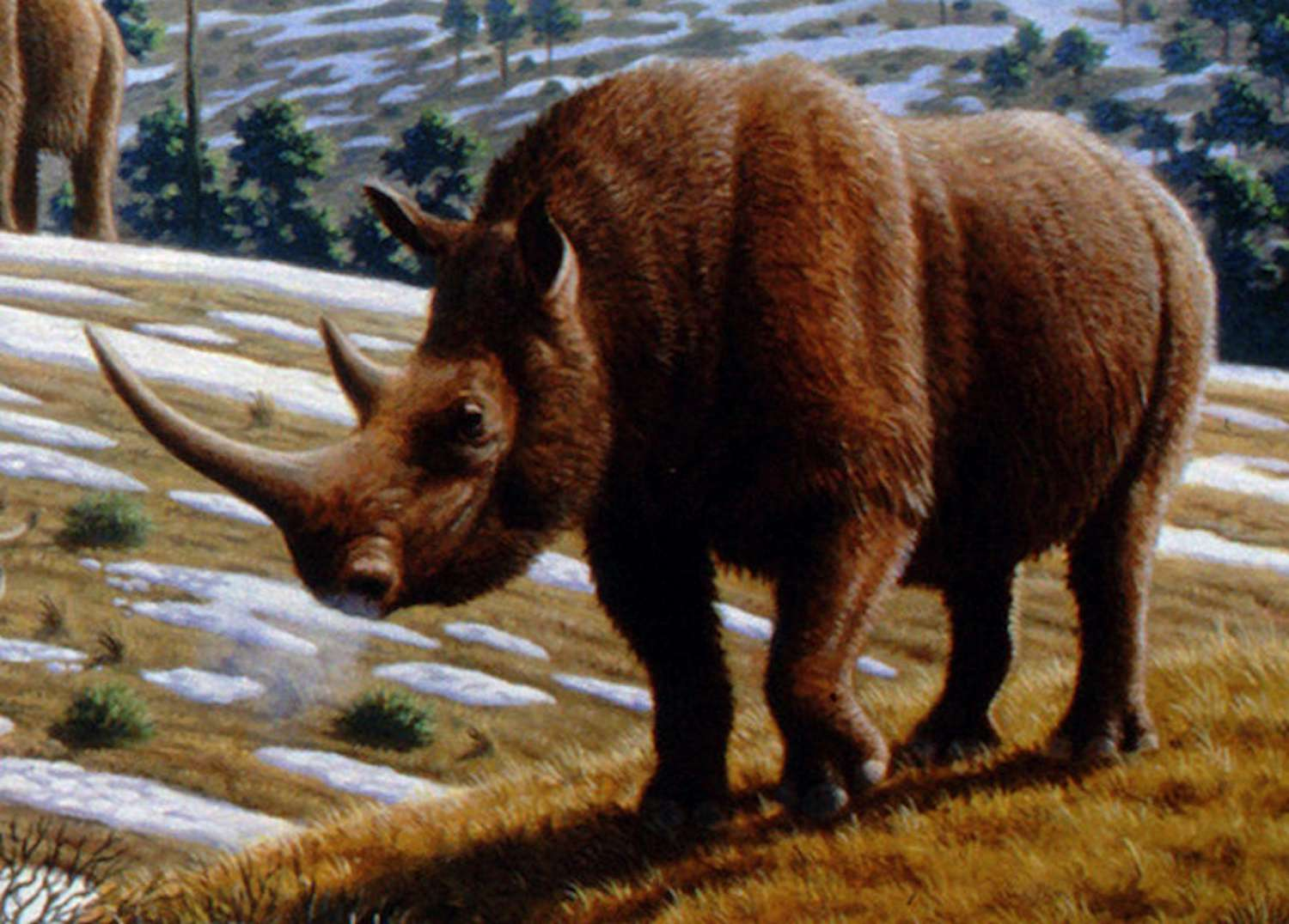 Artist depiction of a woolly animal during the Ice Age.