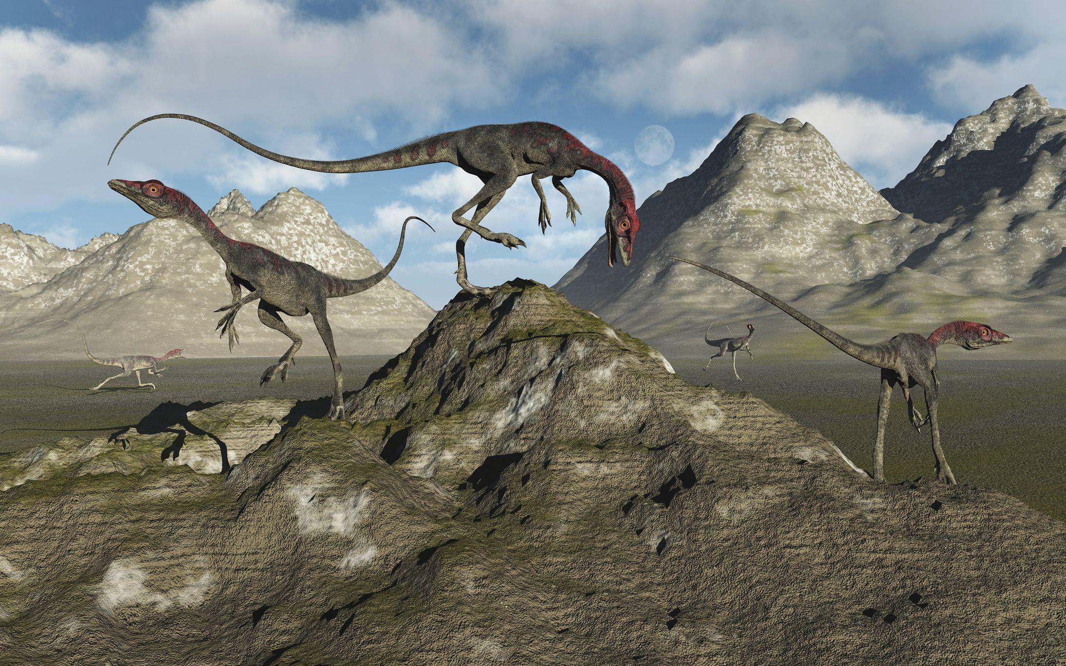 """Résultat de recherche d'images pour """"compsognathus"""""""
