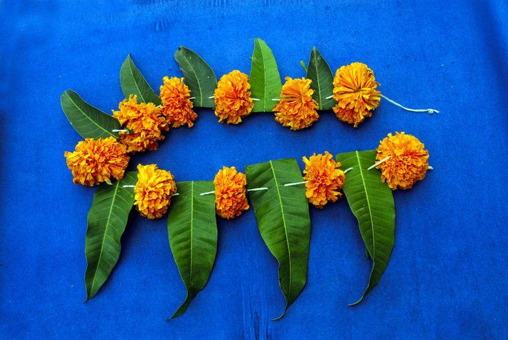 Угади (Ugadi) - начало новой эры. Это новый год у жителей штатов Андхра-Прадеш и Карнатака. Принято украшать дома листьями манго, убираться в доме и покупать новую одежду.