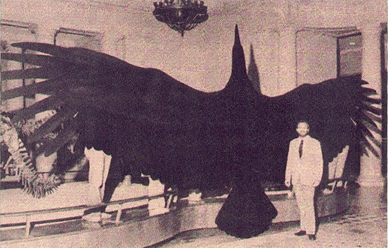 Giant thunderbird