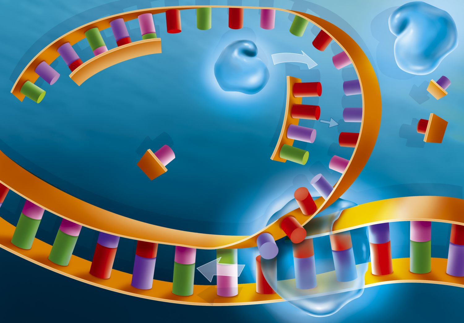 the implications involving dinosaur dna essay Researchers have uncovered a key control mechanism of dna replication with potential implications for better understanding how cells maintain genetic information to prevent diseases or cancer.