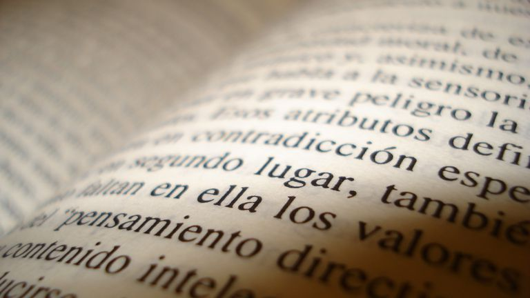 Close-up of writing in Spanish in a book