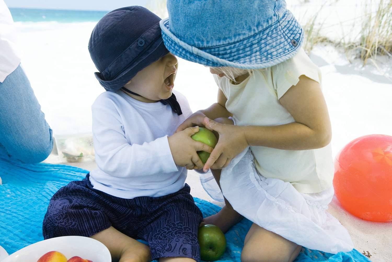 Family Having Picnic on Beach, Siblings Fighting Over Apple