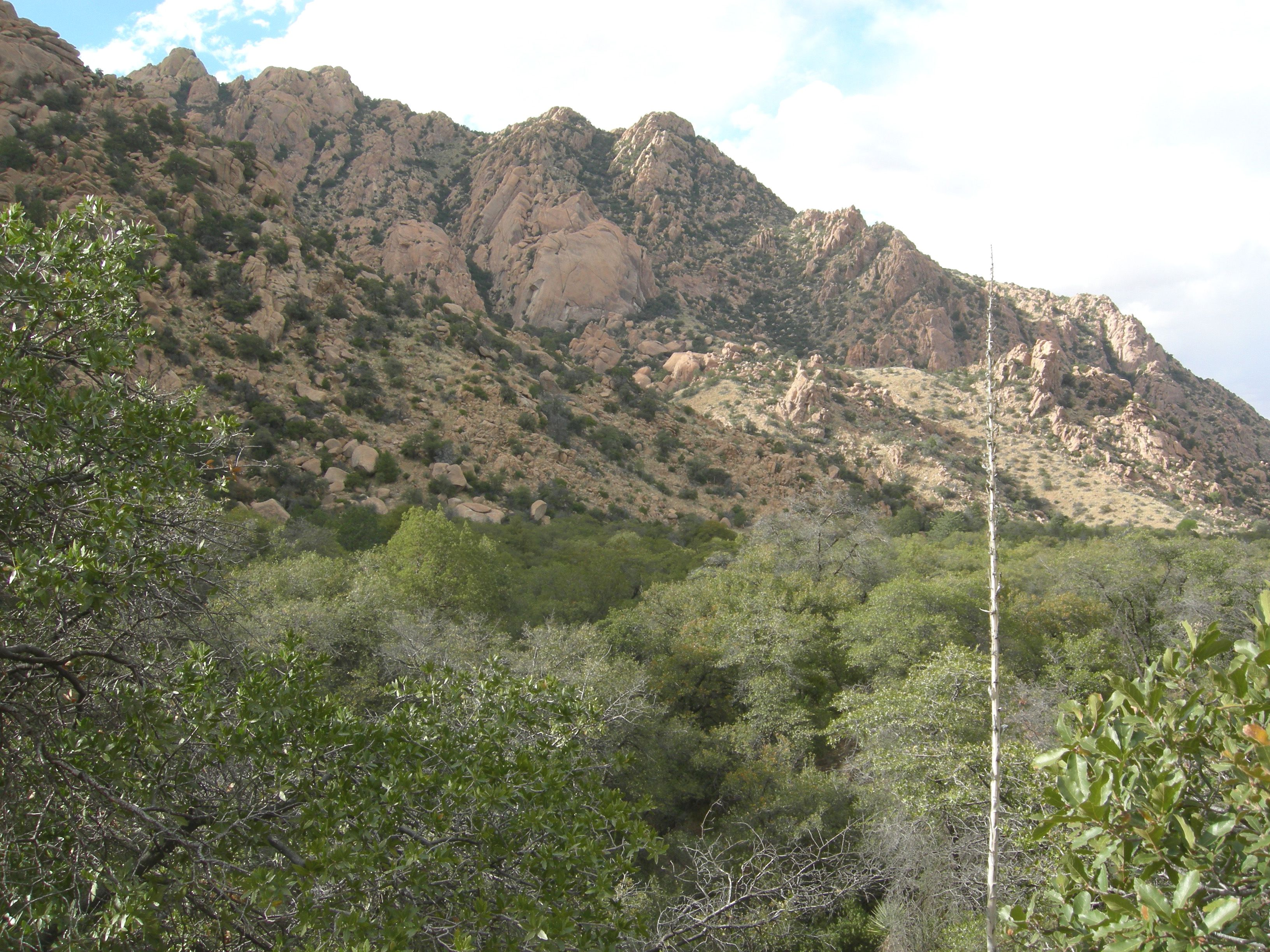 Cochise's Eastern Stronghold, Dragoon Mountains, Southeastern Arizona.