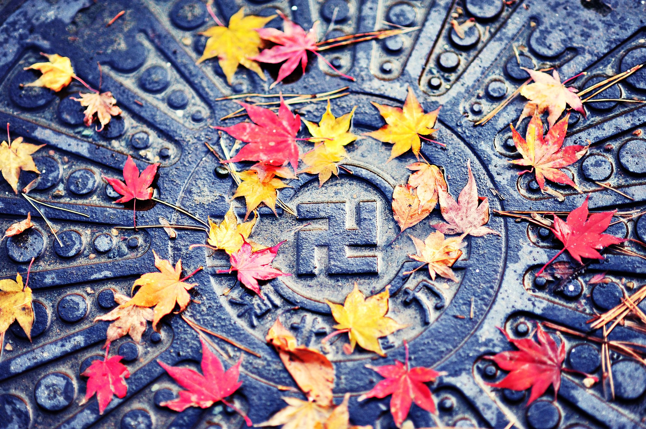 Counter clockwise swastika on Japanese manhole cover.