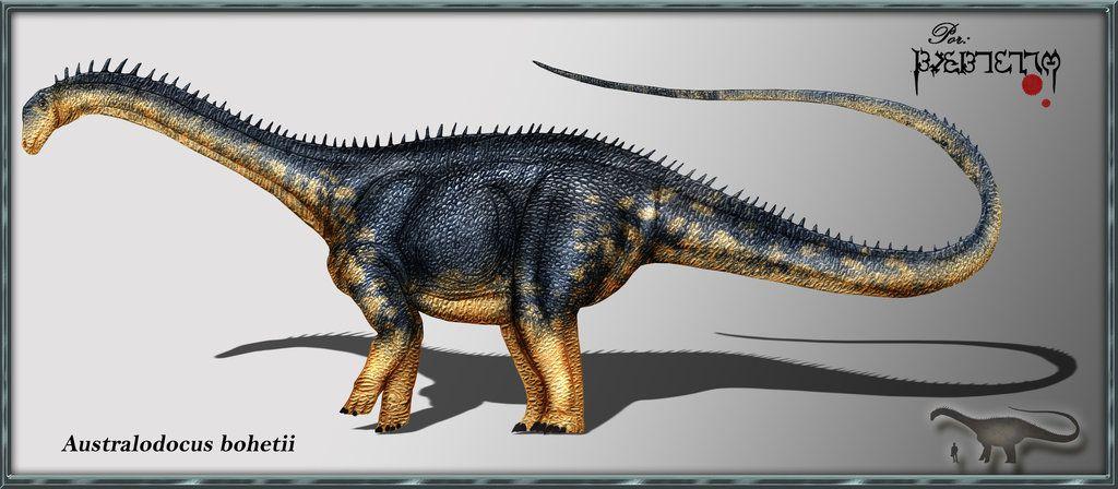 australodocus
