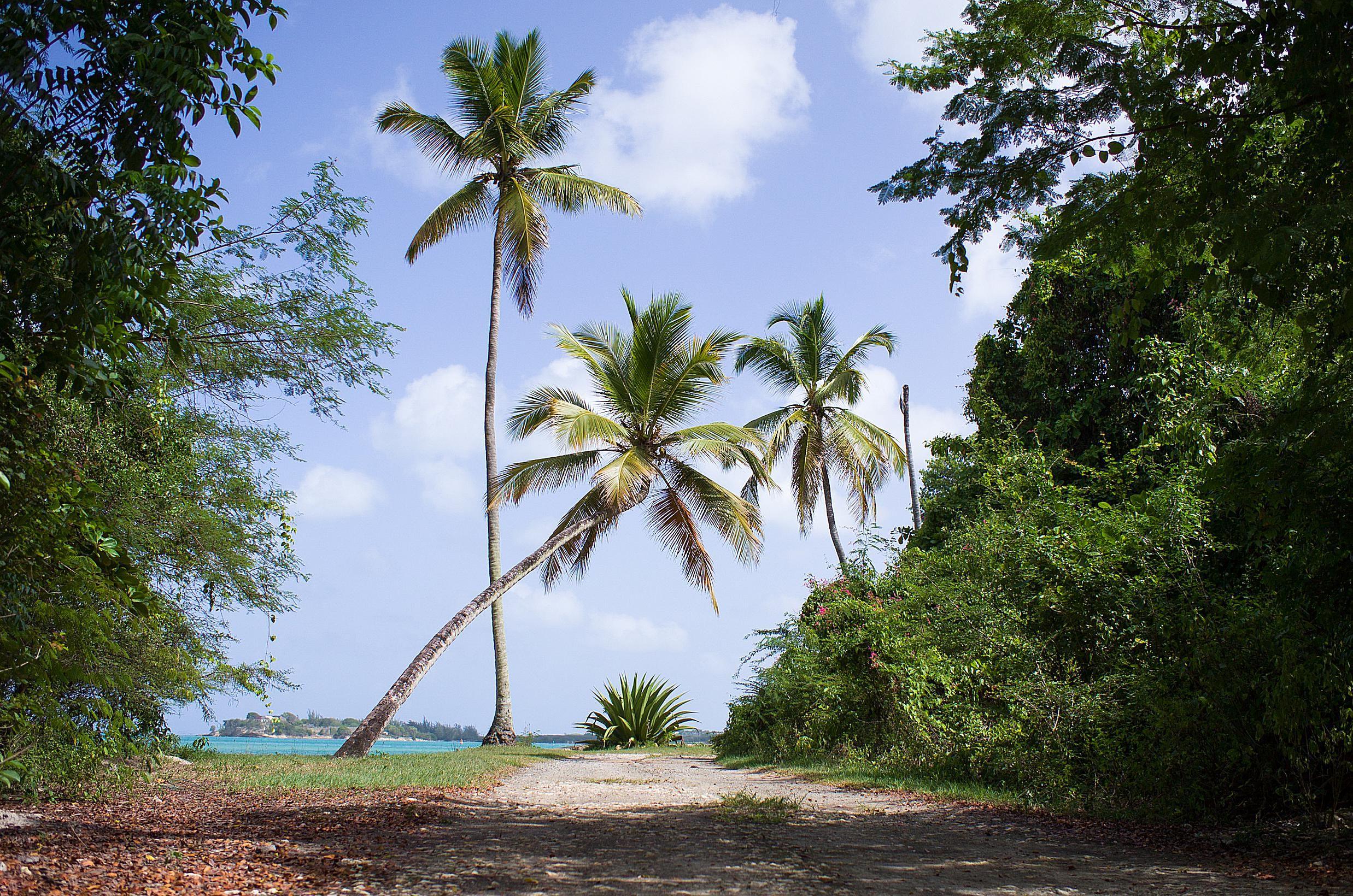 Antigua y Barbuda venden su pasaporte a inversionistas