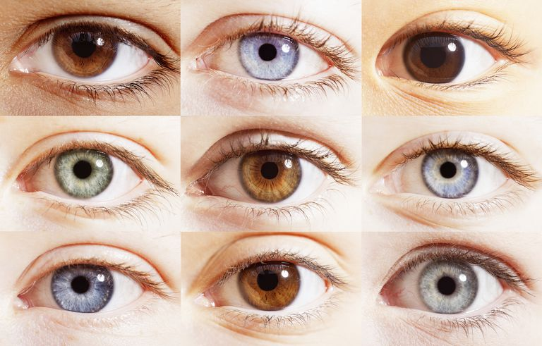 Close-ups of 9 eyes of various colors