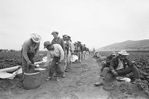 Guest workers with the Bracero Program eating lunch on the side of the road in 1963