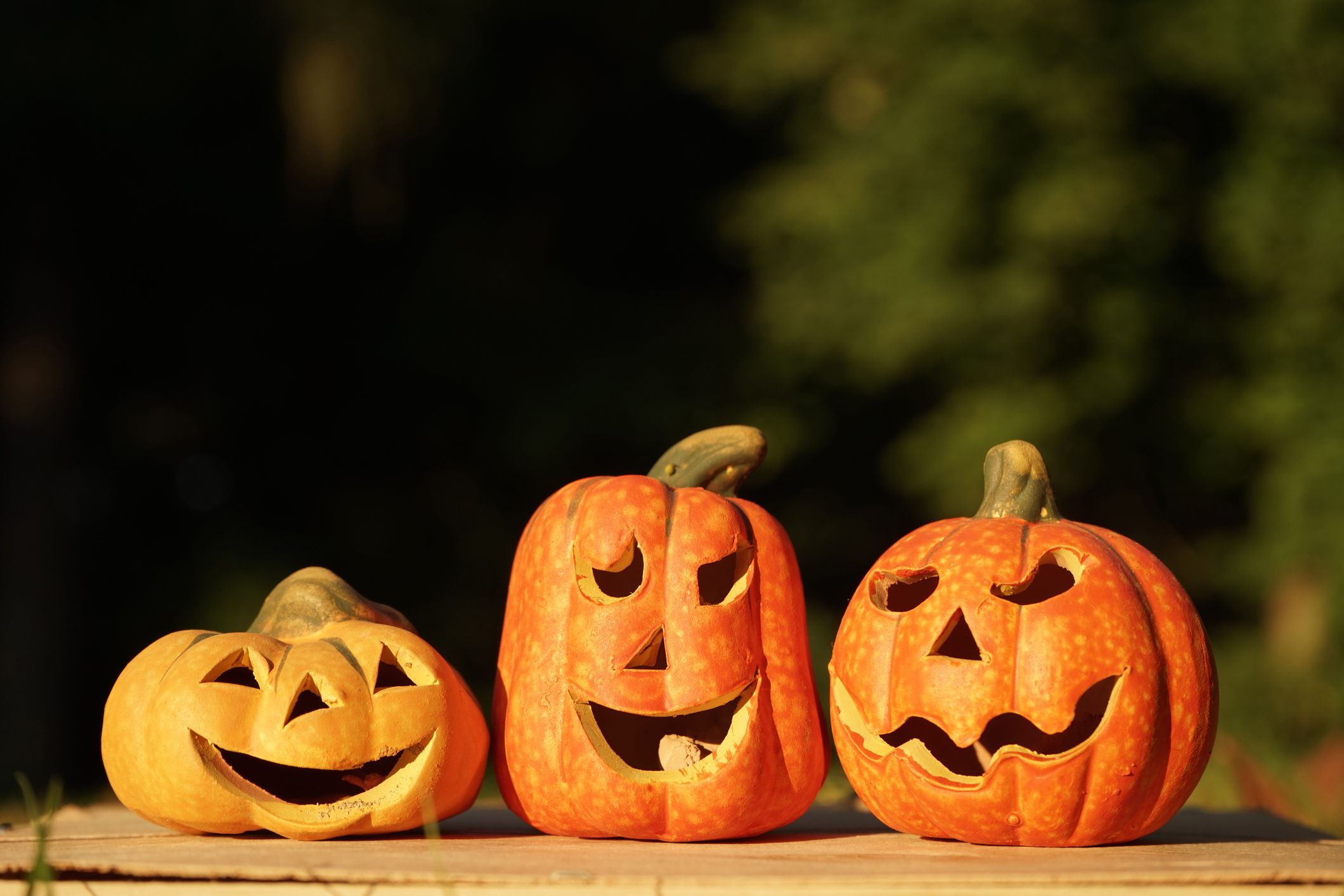 the history of halloween or samhain, day of the dead