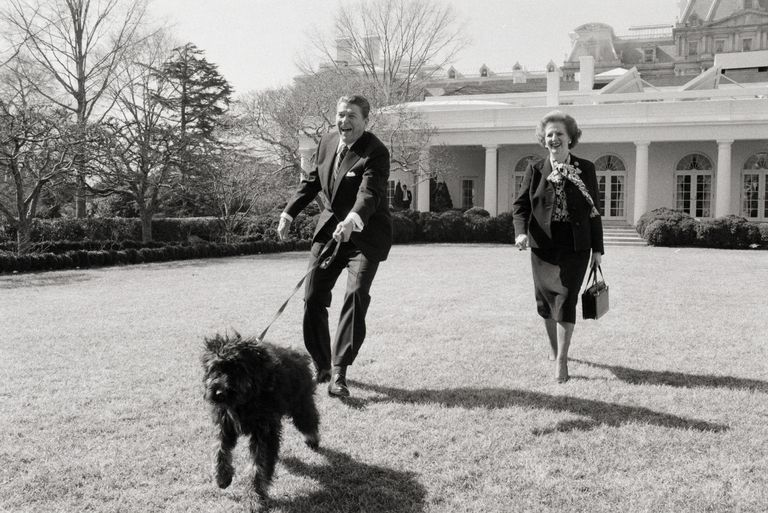 Thatcher and Reagan Walking Dog
