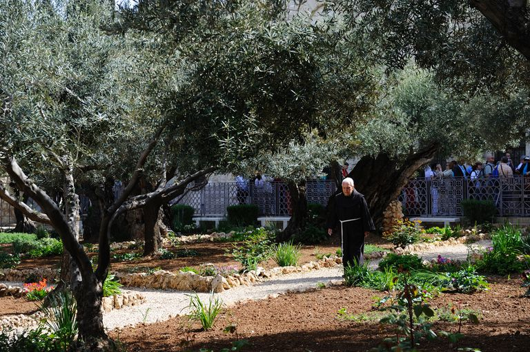 Garden of Gethsemane, Church of All Nations, Jerusalem