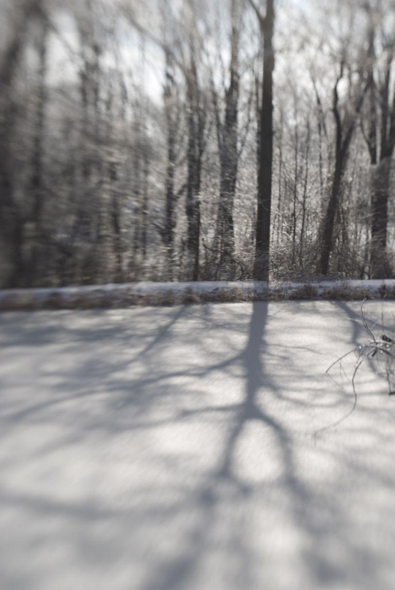 frozen-pond-by-Otto-Phokus.jpg