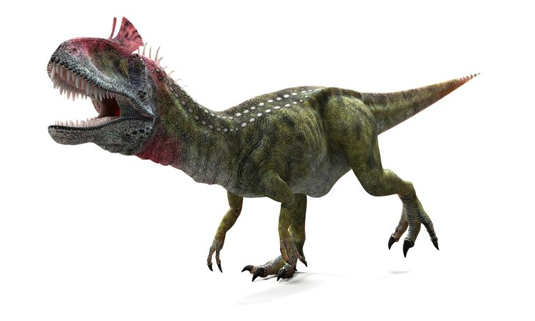 Cryolophosaurus rendering illustration