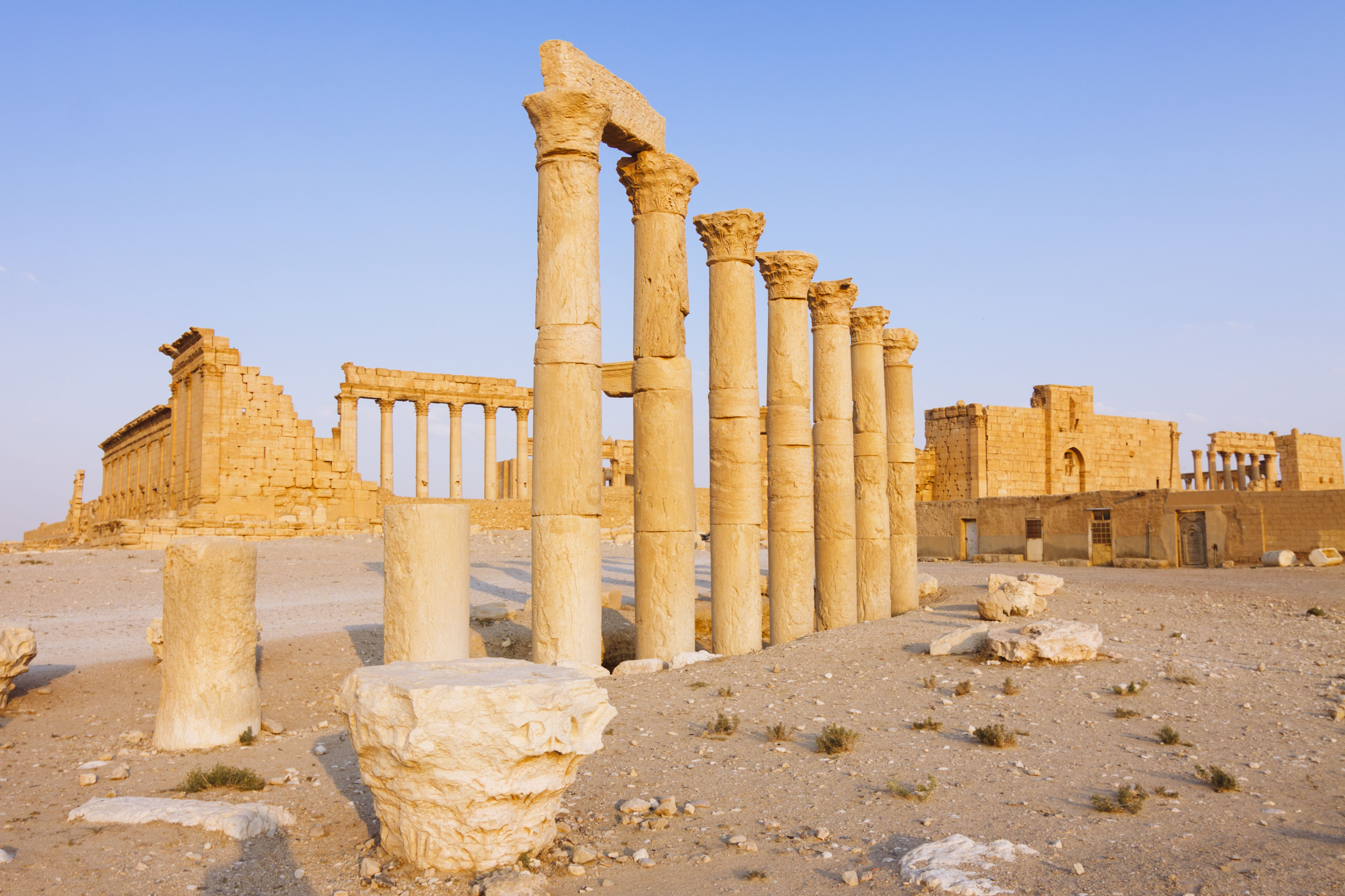 Palmyra, Great Colonnade and Temple of Bel